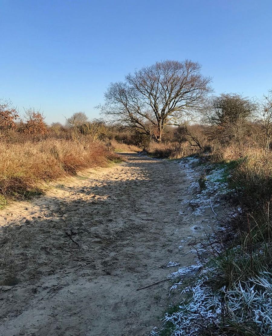 wandeling De Panne