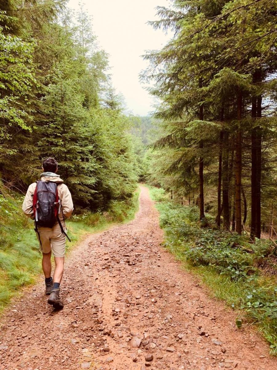 Wandelen Ardennen