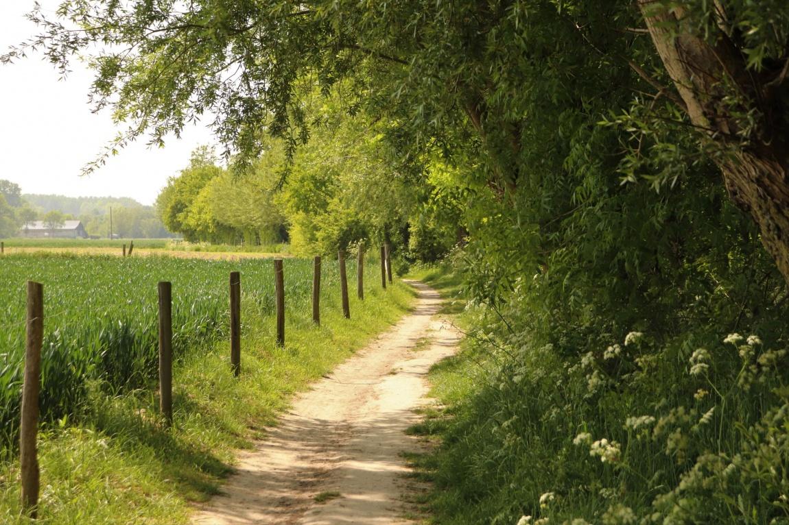 wandelen Zwalmstreek