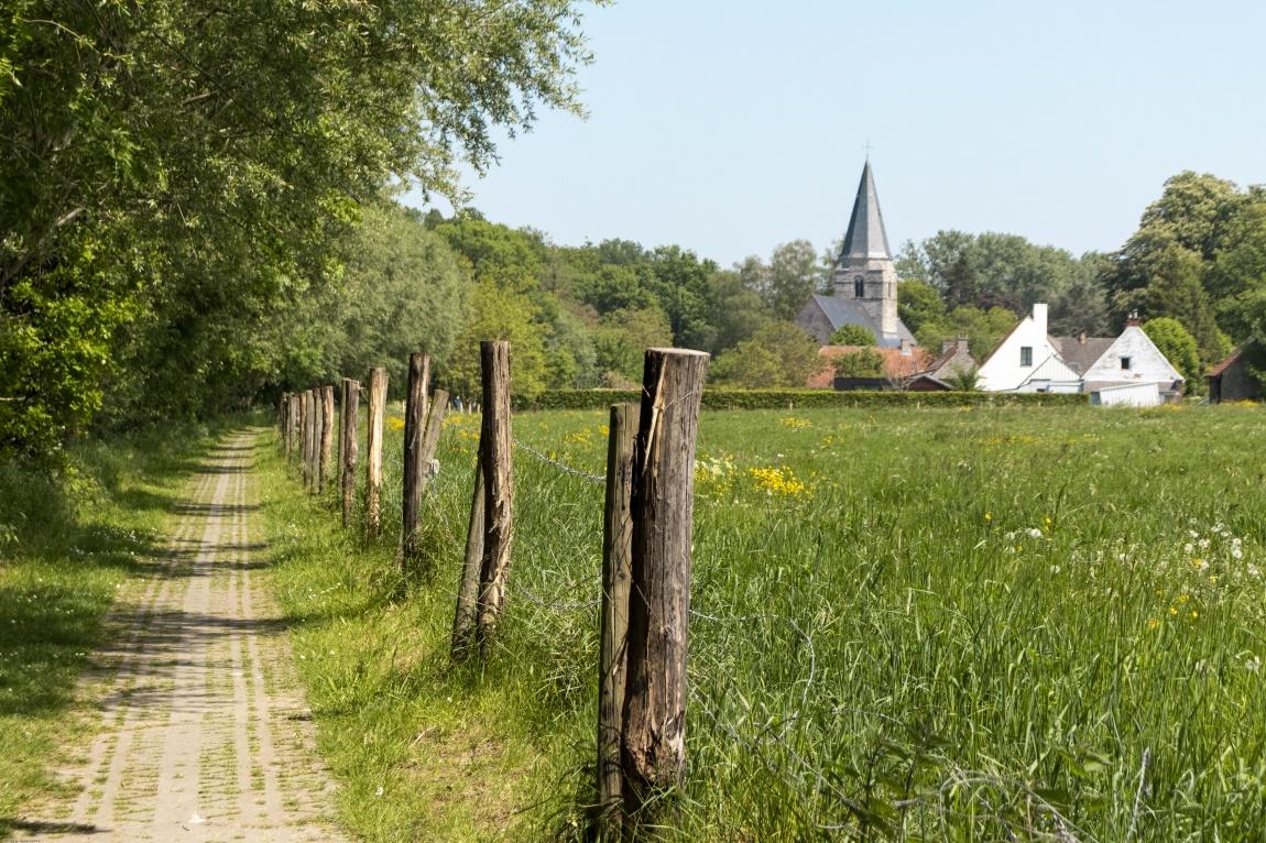 Wandeling Vlaamse Ardennen