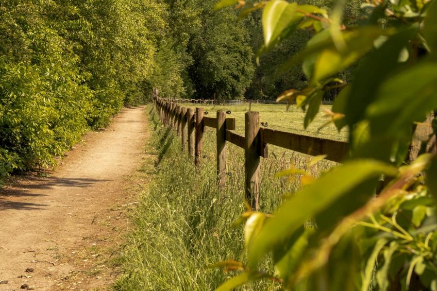 Wandelen in Berlare