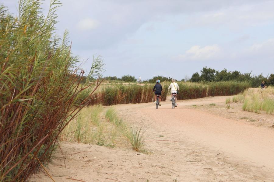fietsen Zwin natuur park