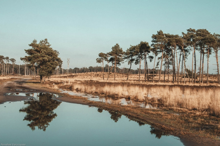 mooiste wandeling België