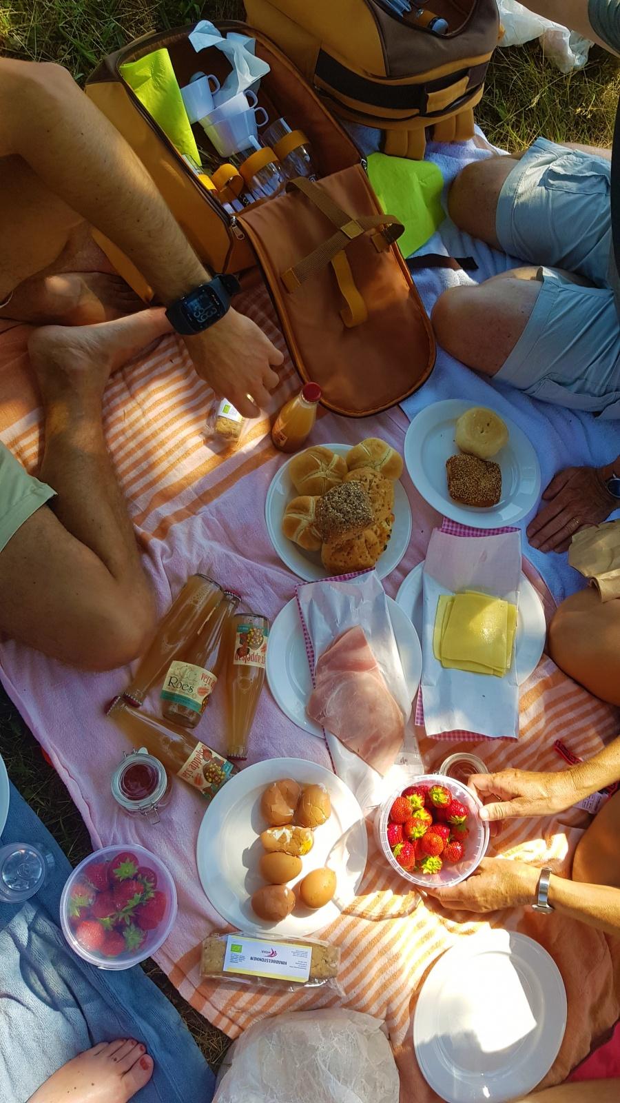 Picknick Antwerpse Kempen
