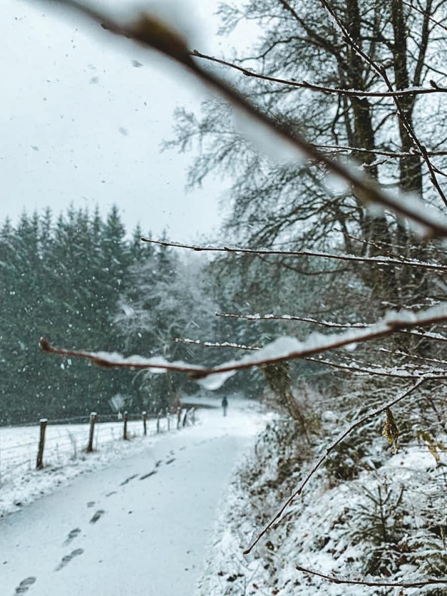 winterwandeling oostkantons