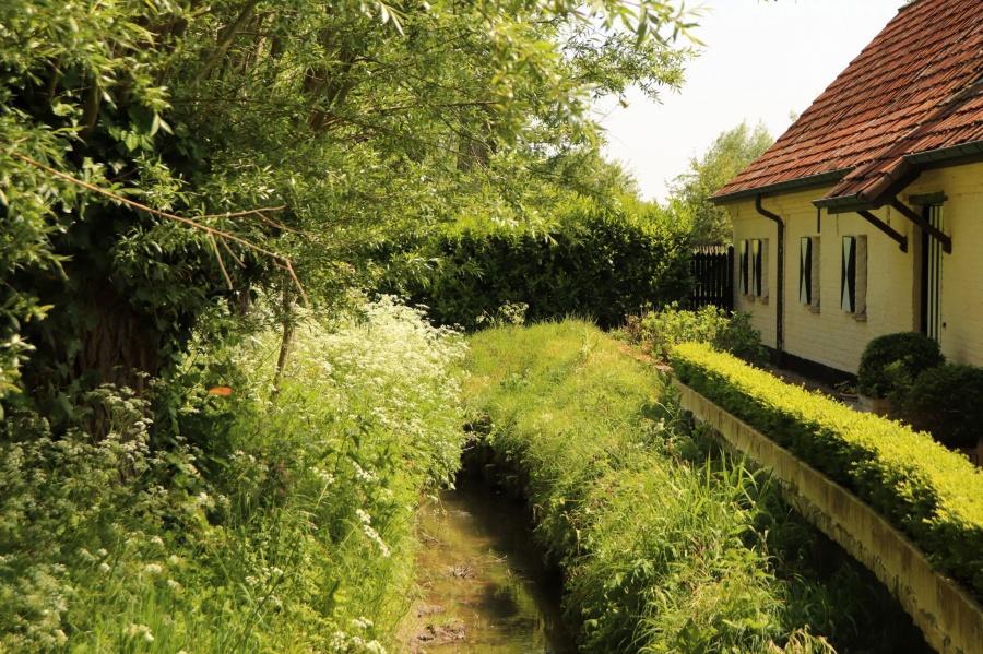 Wandelroute Vlaamse Ardennen