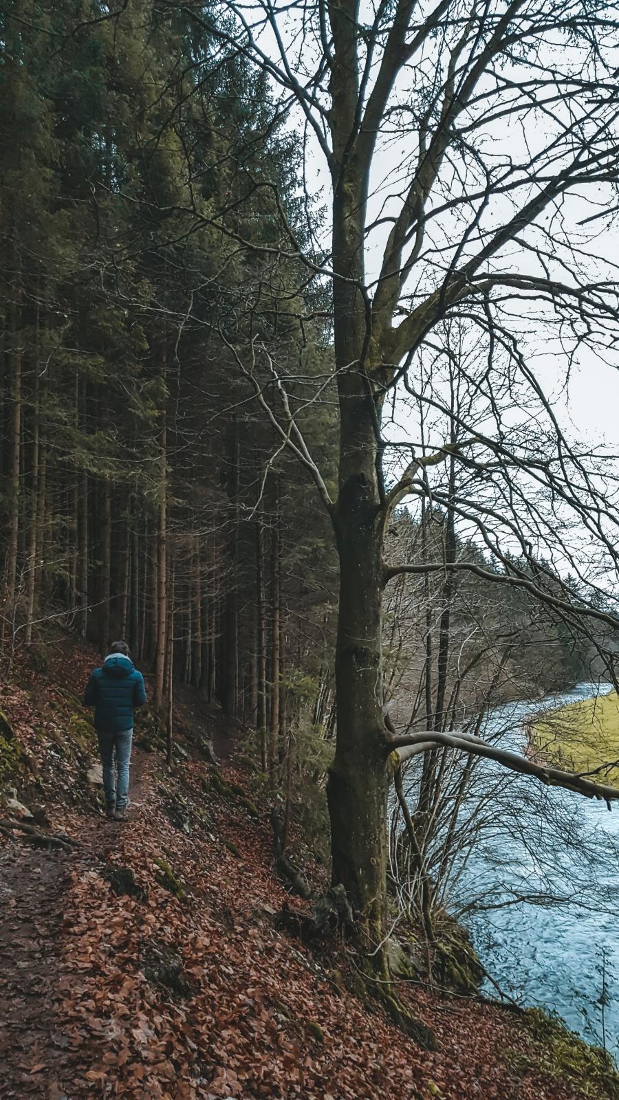 mooie wandeling malmedy