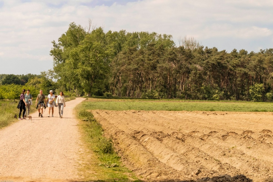Wandelen in Vlaanderen