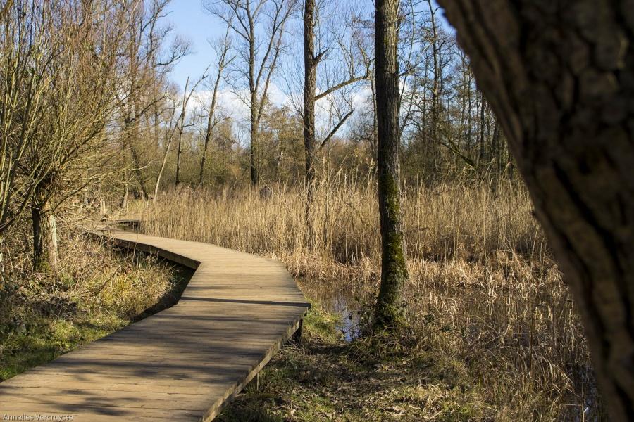 Hobokense polder wandeling